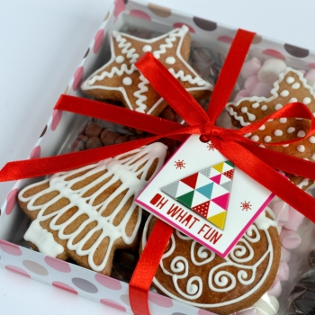 Hot Chocolate & Gingerbread Biscuits Gift Box