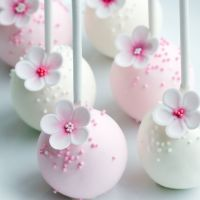 Chocolate Cake Pops Course
