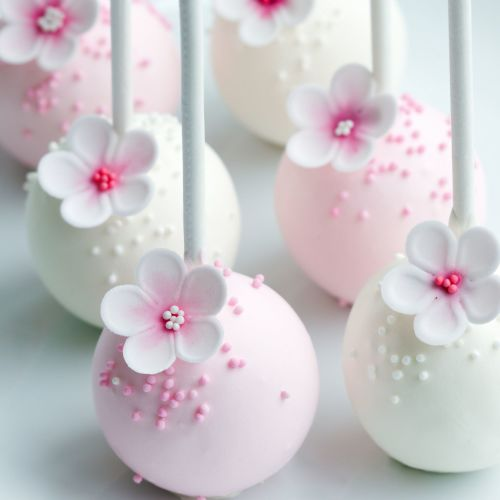 Chocolate Cake Pops with Flowers