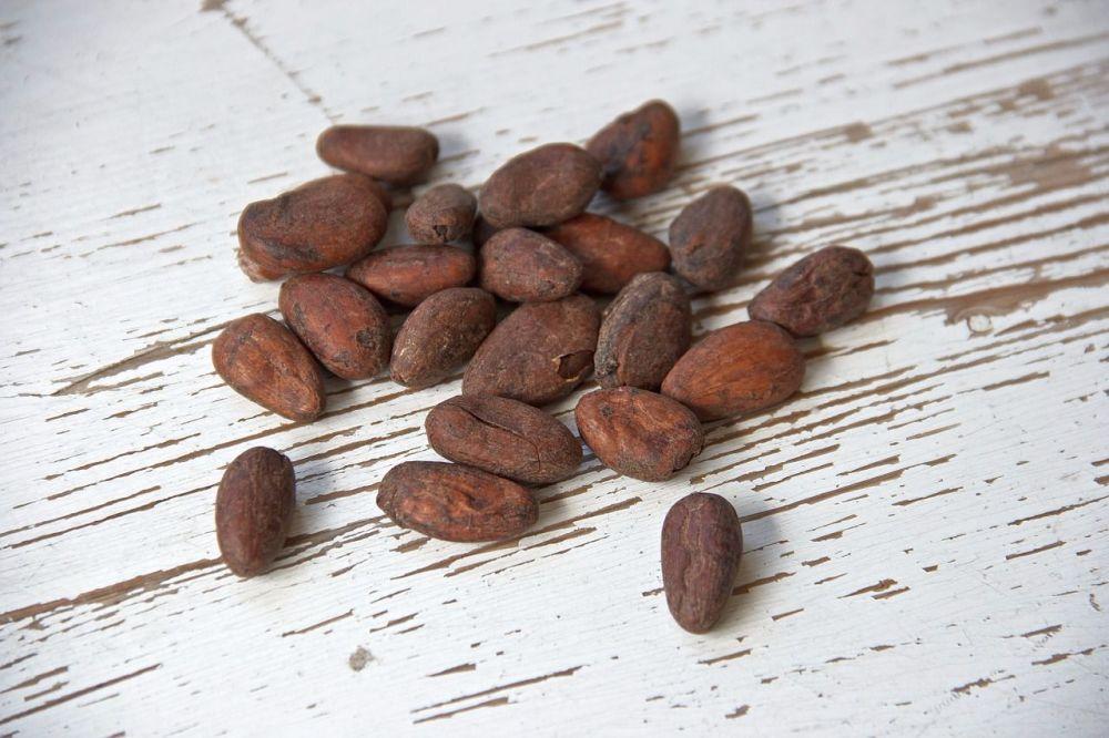 cocoa-bean-1282894_1280