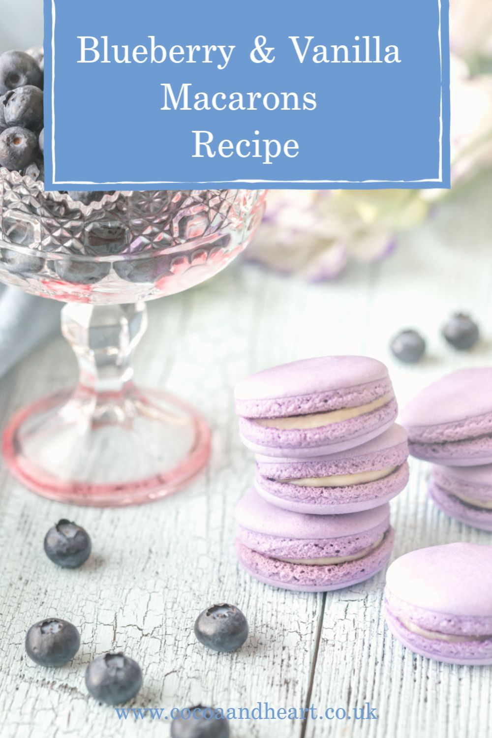 Blueberry & Vanilla Macarons Recipe