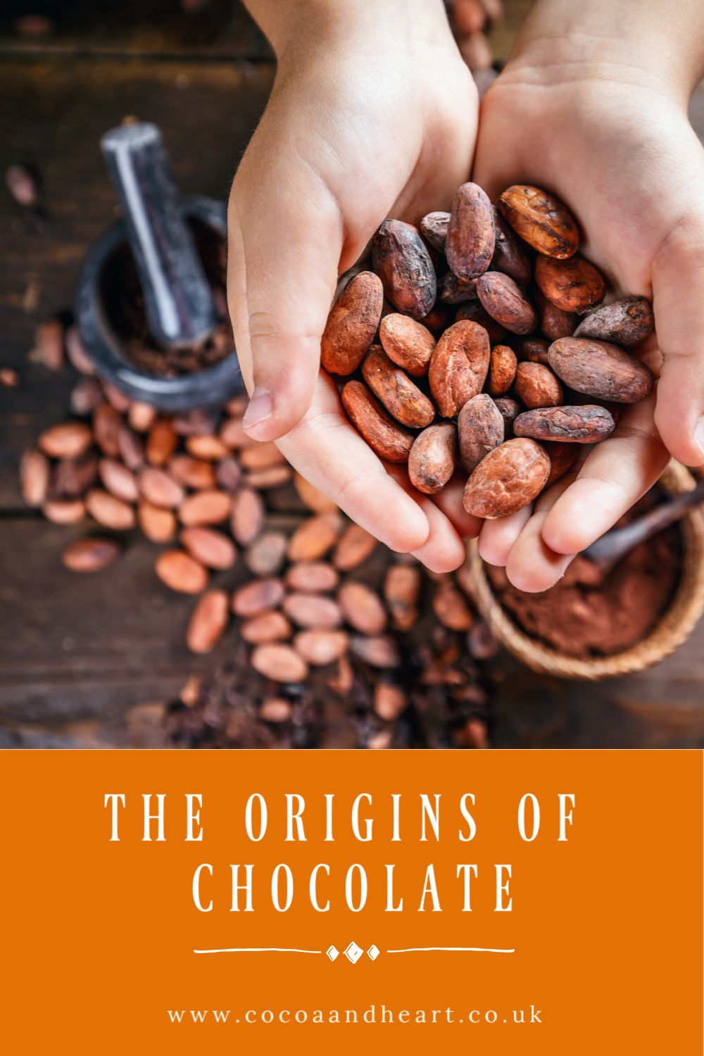 The Origins of Chocolate - Where does chocolate come from?