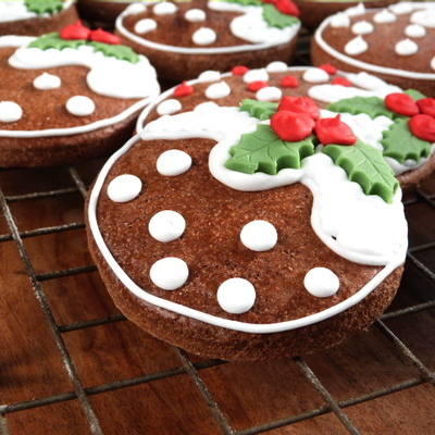 Gingerbread Biscuits (3)