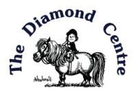 diamond centre logo