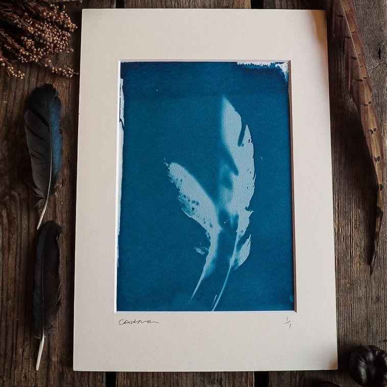 Cyanotype mounted original prints