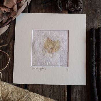 Small Eucalyptus  print on handmade paper