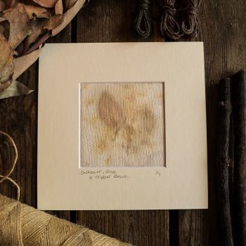 Small Safflower petal, Rose leaf and Copper Beech print on handmade paper
