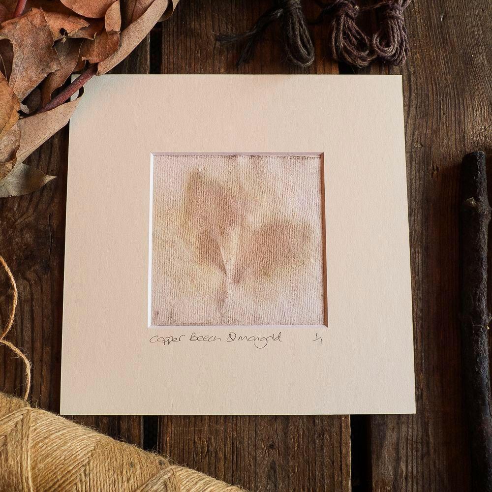 Copper Beech and Marigold petal print on handmade paper