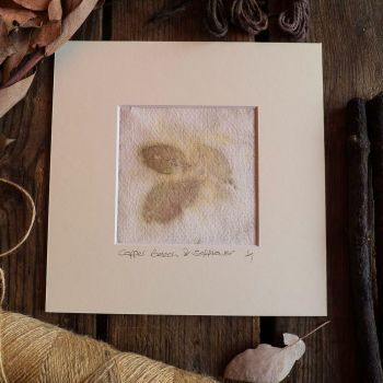Small Copper Beech and Safflower petal  print on handmade paper