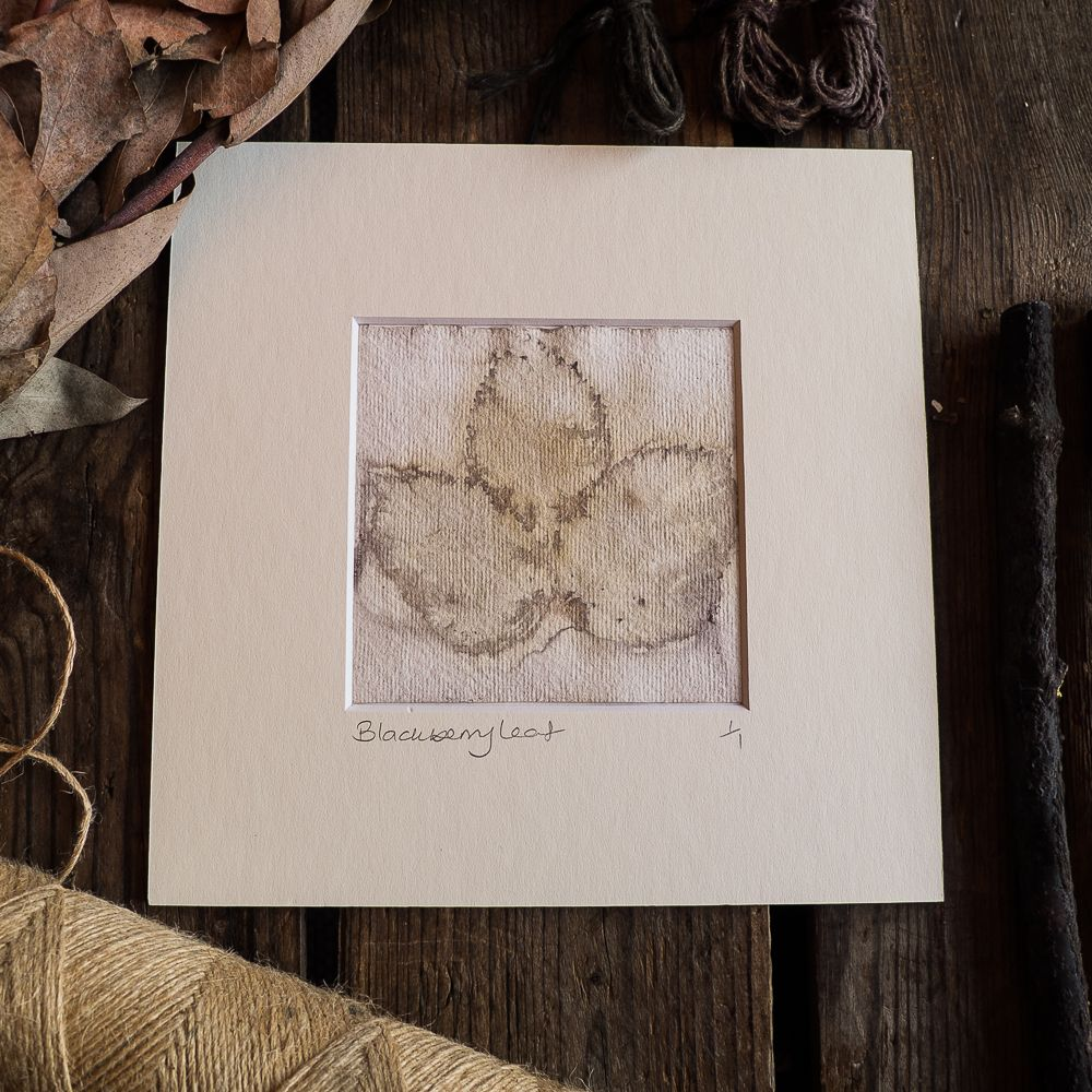 Blackberry leaf print on handmade paper