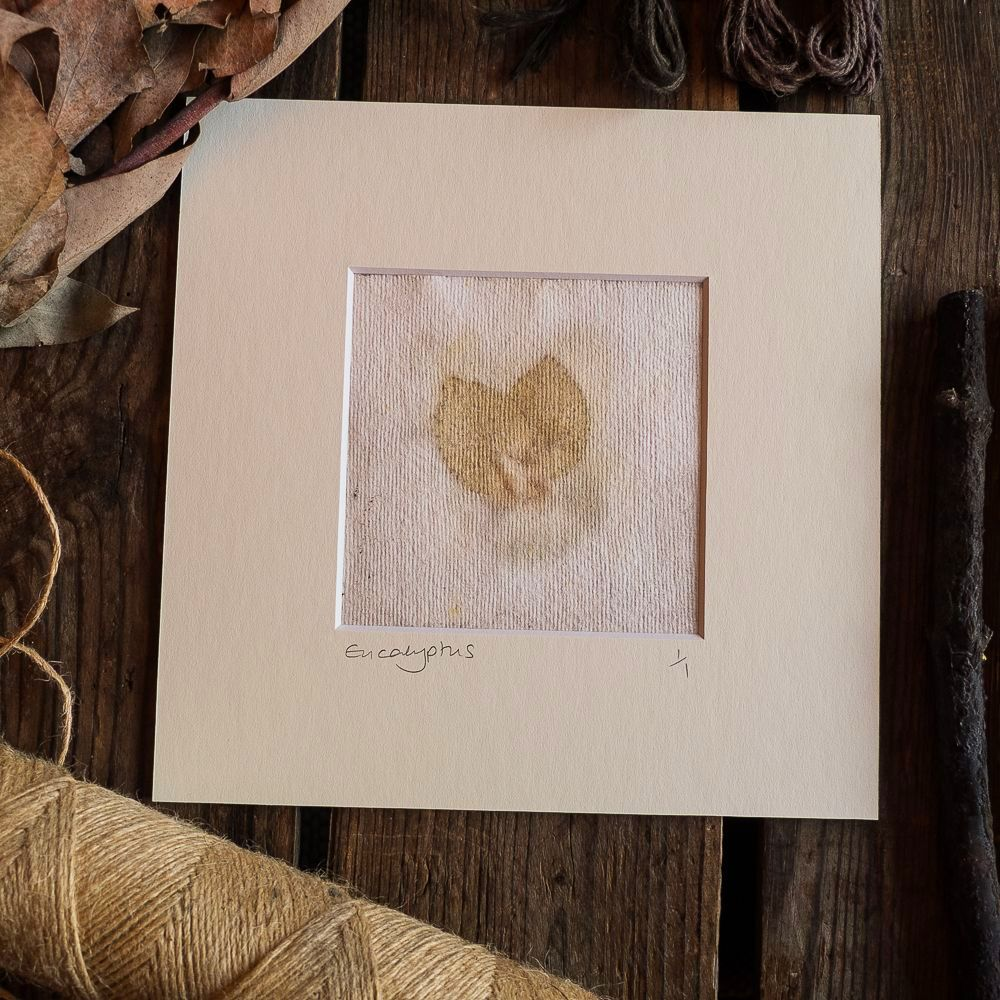 Eucalyptus print with speckle detail on handmade paper