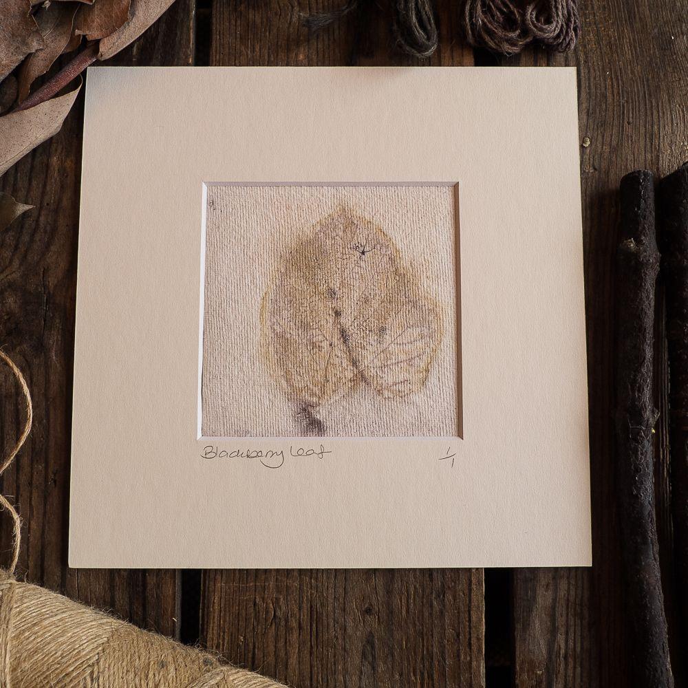 Privet leaf  print on handmade paper
