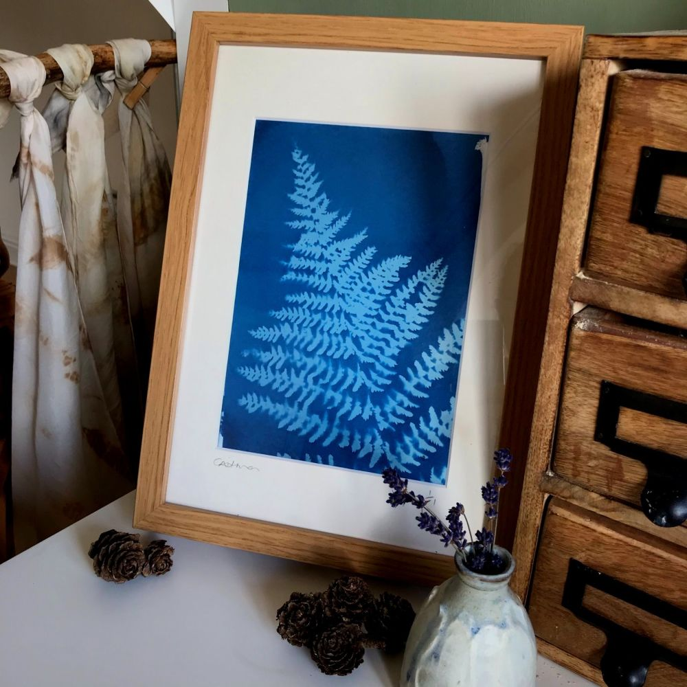 Fern Cyanotype original print in A4 Mount and frame
