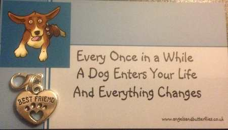 dog fridge magnet