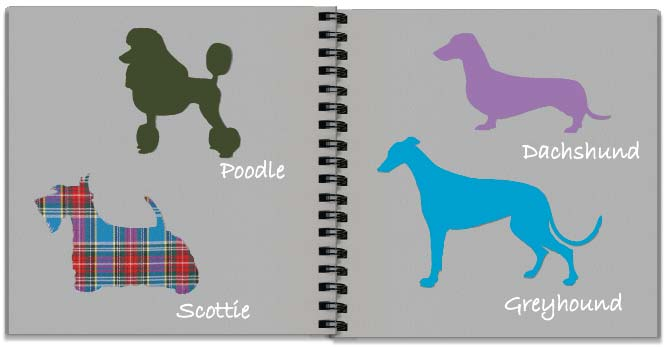 Dog patterns storyboard