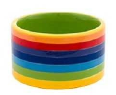 Rainbow Stripe Large Dog Bowl