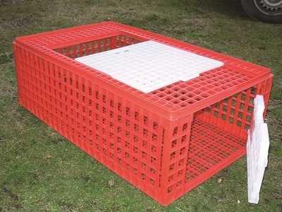 Plastic 2 door poultry crate