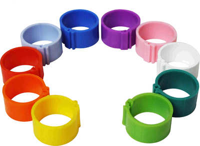 Poultry Leg Rings - Pack of 10 from