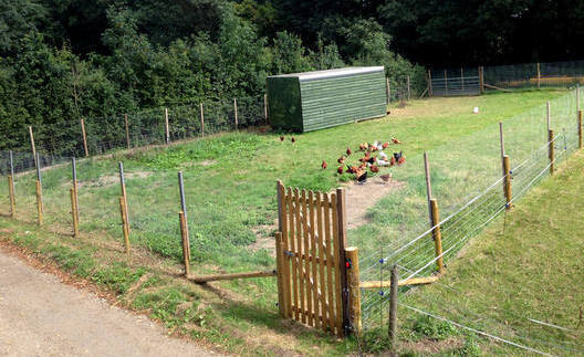 farmyard 2