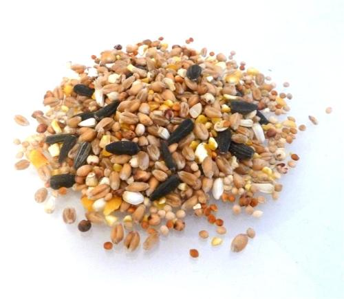 Wild Bird Food - 2.5kg