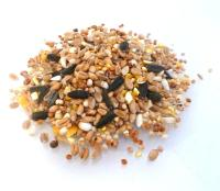Wild Bird Food - 5kg