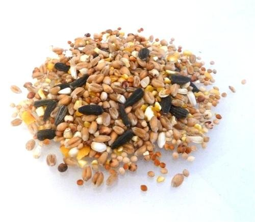 Wild Bird Food - 15kg