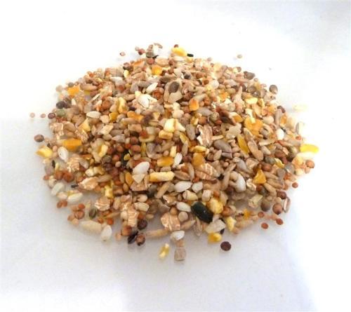Premium Wild Bird Seed - 10kg