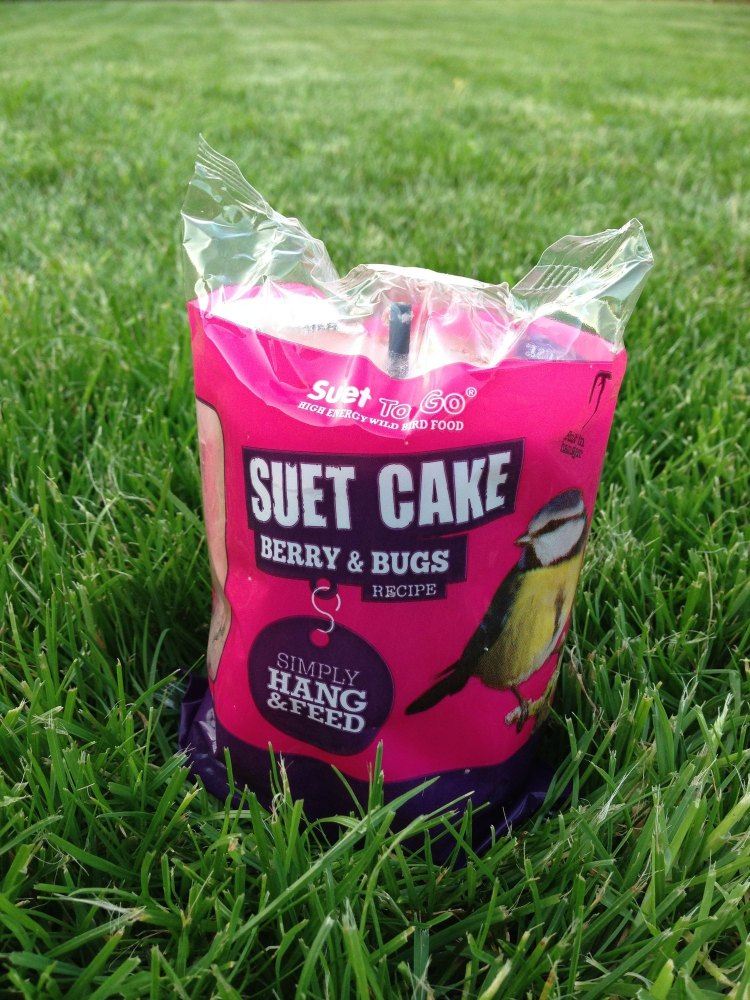 Insect suet cake with hanger