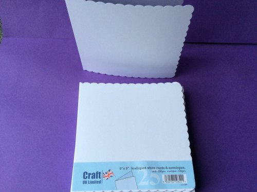 CARD & ENVELOPES 8x8