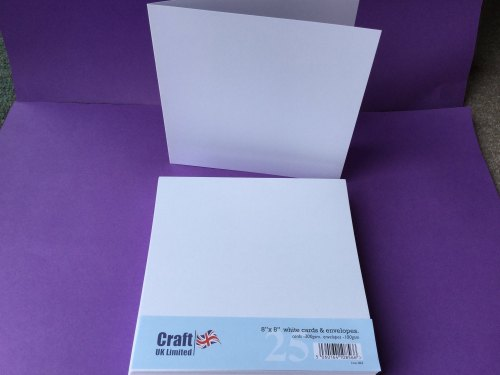 Card & Envelope pk 8x8