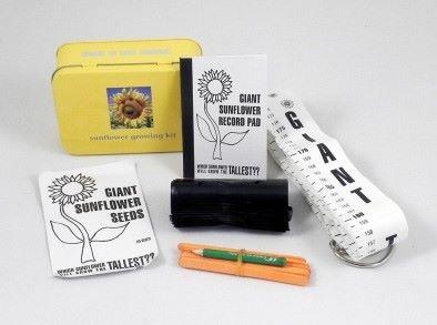 Gift in a Tin - Sunflower Growing Kit