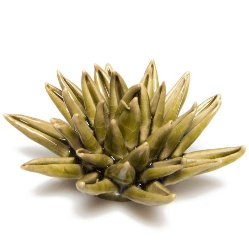 Ceramic Cactus Olive