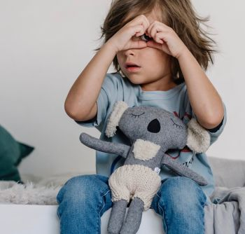 Fergus Koala Soft Toy
