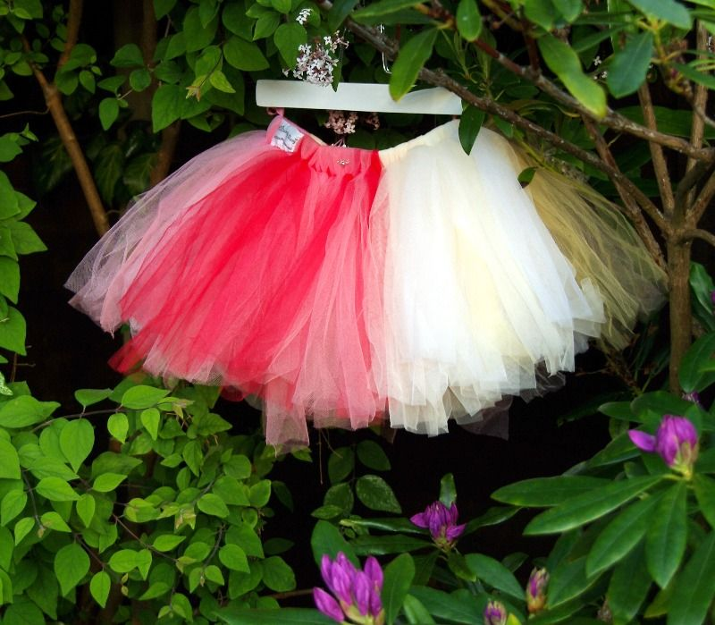 lovely lane dainty dizzie tutu fairy rainbow