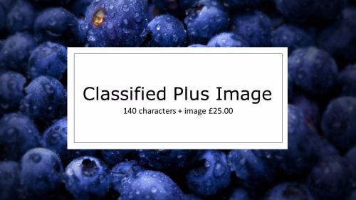 Classified Plus Image