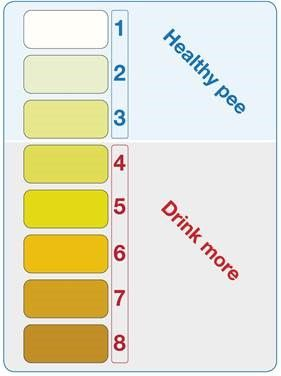 urine colour chart