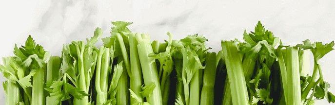 organic-celery-PS-720x720
