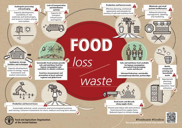 Food waste blog