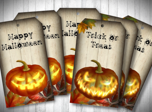 Pumpkin Happy Halloween and Trick or Treat Gift Tags & String
