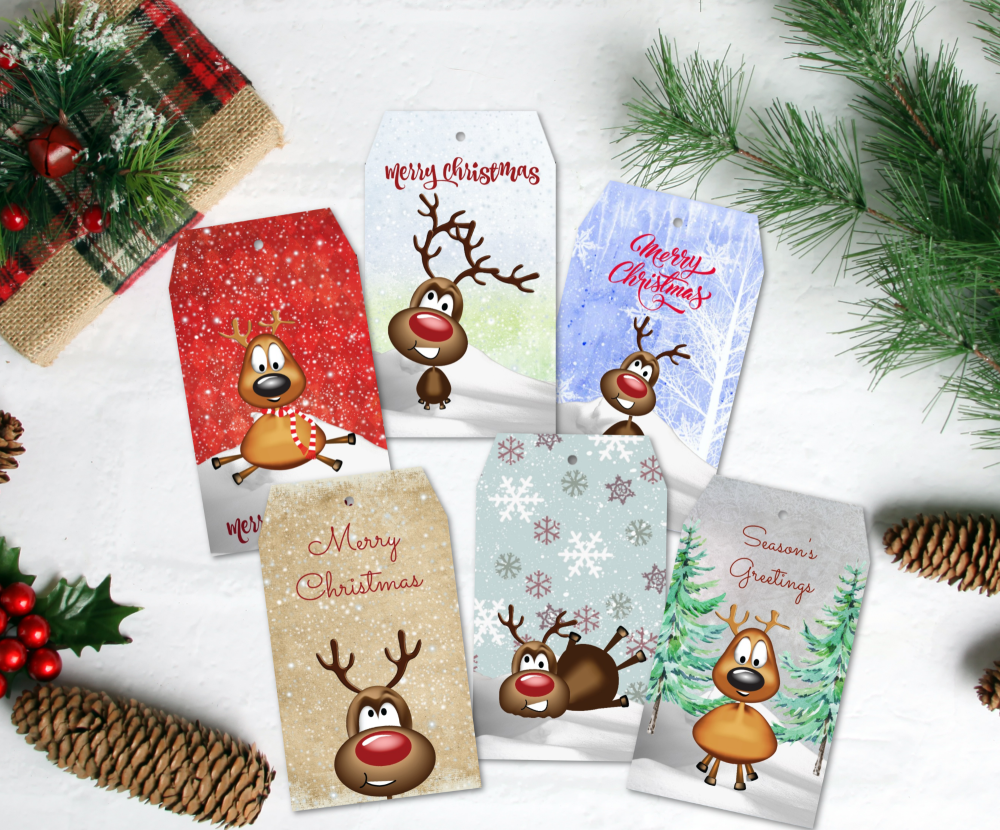 6 Assorted Christmas Reindeer Gift Tags & Natural Jute Twine
