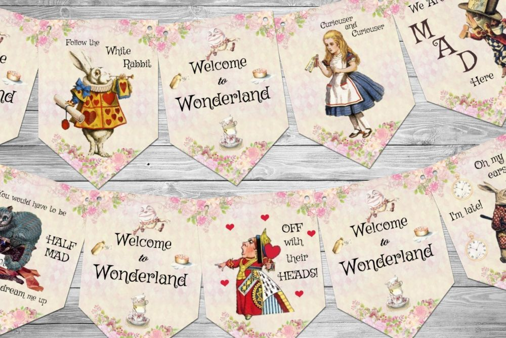 Alice in Wonderland Party Bunting/Banner & Ribbon - 3m
