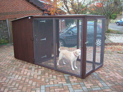 BIG DOG HOUSE