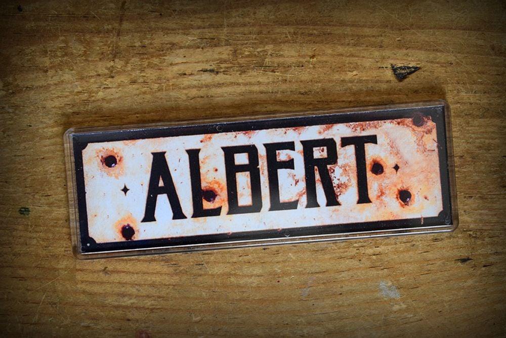 Albert Fridge Magnet