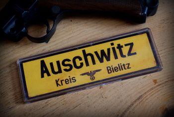 Auschwitz Kreis-Berlitz Fridge Magnet