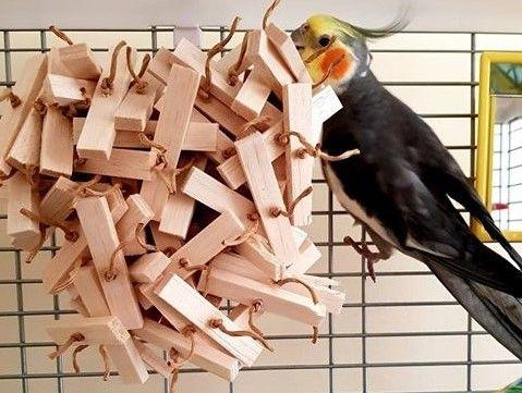 Natural shredding toys for cockatiels-Logan