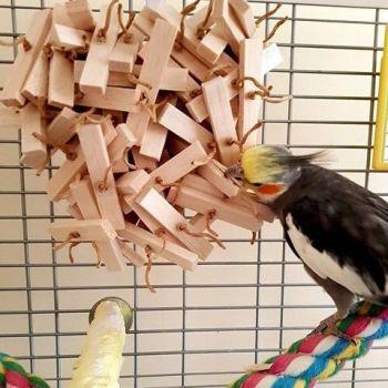 Natural shredding toys for budgies-Logan