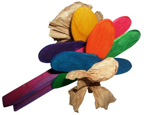 Flower Power, Colourful Foot Toy for Medium to Large Parrots