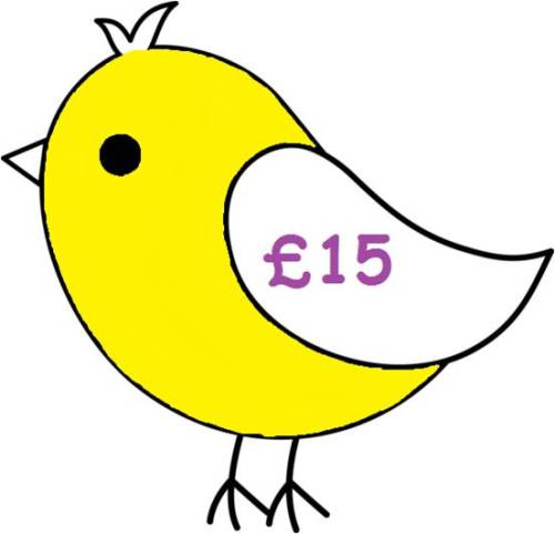 £15 Gift Voucher for all Things Birdie