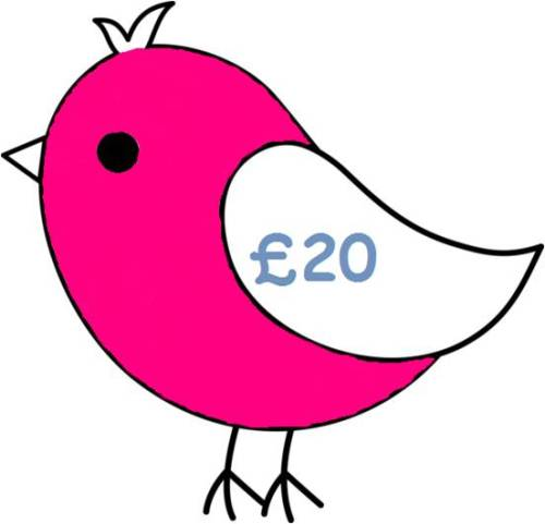 £20 Gift Voucher for all Things Birdie