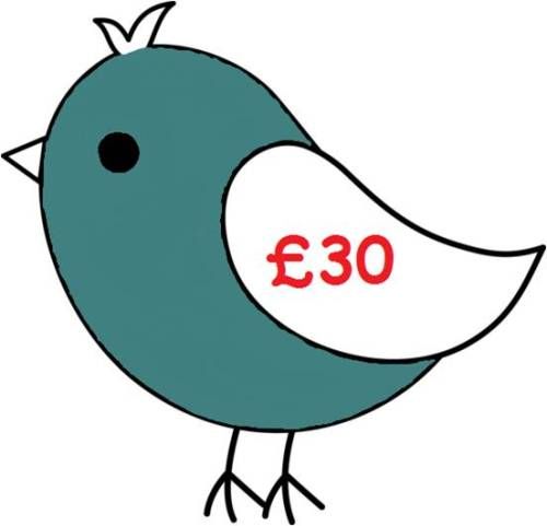 £30 Gift Voucher for all Things Birdie
